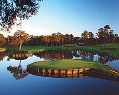 one of my favorite golf courses sawgrass golf course - Google Search