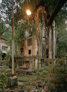 The Forbidden Mansion, Calcutta, India. Can't find out why it was called this. Old Buildings, Abandoned Buildings, Abandoned Places, Wabi Sabi, Parks, Mysterious Places, India, Grand Tour, Travel Memories