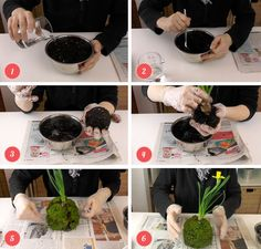 DIY Herstellung von Kokedamas (Moosbälle) Deko-Kitchen