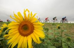 Étape 7 - Épernay > Nancy - Tour de France 2014