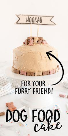 Easy Dog Cake Recipe, Dog Cake Recipes, Dog Biscuit Recipes, Dog Treat Recipes, Dog Icing Recipe, Dog Cake Recipe Peanut Butter, Peanut Butter Dog Treats, Dog Bday Cake, Cake Dog
