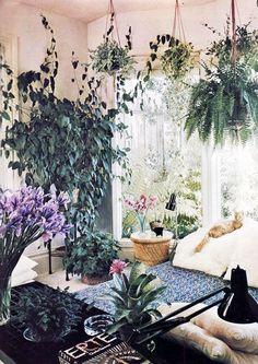 MINZUU Blog   Styling the Seasons: Plants