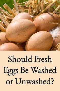 Should Fresh Eggs Be Washed or Left Unwashed