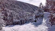 Mont Sutton, Québec, mars 2017 Quebec, Mars, Snow, Outdoor, Pathways, Mountain, Landscape, Outdoors, March