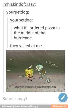 spongebob memes | funny tumblr post