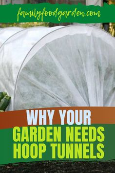Ensure your produce thrives in your garden. Family Food Garden recommends hoop tunnels. Prevent vegetables from flowering, extend the seasons, prevent cabbage moths, among other benefits. We highlight 6 ways to use low tunnels to ensure your crops stay healthy. Included are instructions for a DIY greenhouse plastic or row cover.. To protect your produce from frost and sunlight, warm the soil and other factors read more… #gardenhooptunnels #gardengreenhouse #gardenrowcover Healthy Fruits And Vegetables, Row Covers, Diy Greenhouse, Garden Planning, How To Stay Healthy, Family Meals, Read More, Hoop, Cabbage