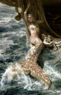 Put your ear to the shelland hear the oceans swellWithin its ripple and its tidethere are many who resideListen closely to all its gloryand you will hear a mermaids story ~unknown