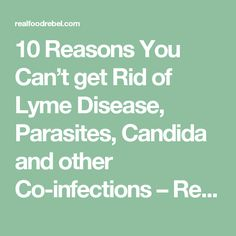 10 Reasons You Can't get Rid of Lyme Disease, Parasites, Candida and other Co-infections – Real Food Rebel