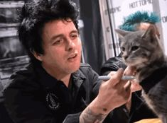 A lady brought her cat to a Green Day signing, she said the cat was a big fan ^-^ aww. The cat is wearing an adorable bandana too ♡// ohhh thats cute Emo Bands, Music Bands, Green Day Tattoo, Green Day Billie Joe, American Idiot, East Bay, Fall Out Boy, Billie Joe Armstrong Tattoos, Music Stuff