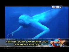 On The Spot - 7 Misteri Dunia Lain Bawah Laut
