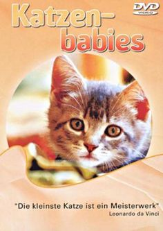 Katzenbabys Documentary movie - Watch free #documentaries on Viewster.com