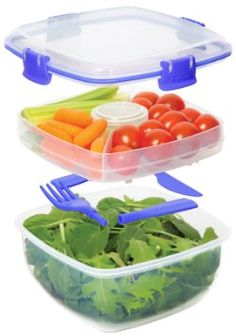 Sistema Salad To Go Lunch Container