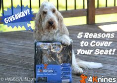 My GBGV Life | @4Knines rear seat covers protect your car from dirt, water, claws, fur, and more! Enter giveaway to win!