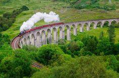 Tren pasando sobre viaduto