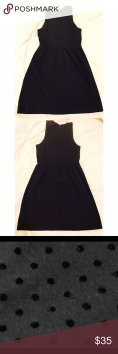 J. Crew Black Velvet Dot Ponte Dress J. Cree black ponte dress with velvet dot details. Stretchy fabric with back zip and hook closure. Size small. J. Crew Dresses Mini