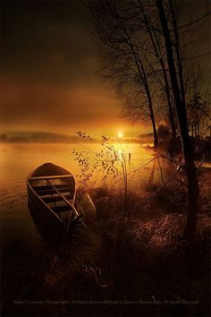 """""""In the Peace of the Moment"""" - Photo by Miquel Loppenbery Antunes. Amazing golden glow of the sunrise illuminating a small rowboat... Pristine natural beauty"""
