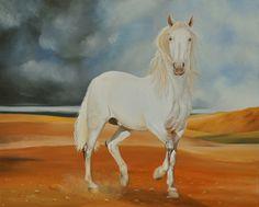 Andalusier Hengst Ölbild 100x80cm