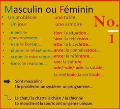Les règles (en général!) masculin vs féminin