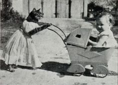 Vintage cat nanny