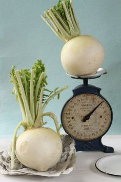 """Showgoin"" radish with antique scale"