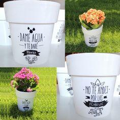 Las macetas más originales, aptas para exterior y para interior... ¿Tienen un hueco en tu jardín? Diy Flowers, Flower Pots, Flowers Garden, Crazy Hats, Original Gifts, Garden Crafts, Garden Ideas, Clay Pots, Indoor Garden