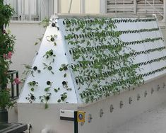 Vertical Aeroponics: Growing 'up' without dirt is taking gardening beyond organic - Your Hub | Cultivos Hidropónicos | Scoop.it