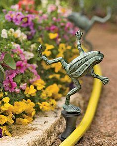 Frog Hose Guide