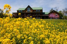 25 Best Myerstown PA images in 2014 | Dutch, Country roads