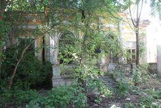 cine ma mai lua si cum si unde ma ducea zice petruta dinu - Căutare Google Arch, Outdoor Structures, Garden, Plants, Longbow, Garten, Lawn And Garden, Gardens, Plant