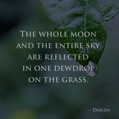 The whole moon and the entire sky are reflected in one dewdrop on the grass… Quiet Moments, Flower Quotes, Write It Down, Tantra, Alternative Medicine, Buddhism, Book Quotes, Peace And Love, Karma