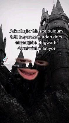 Harry Ptter, Harry Hermione Ron, Ron Weasley, Draco Malfoy, Harry Potter Castle, Harry Potter Hogwarts, Constance Wu, Comedy Zone, Gilbert Blythe