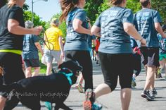 """""""And I was running!"""" Forrest Gump voice) said the dogs chasing after their humans in the Paw Valley 5K race in Lawrence KS.  #brownfootbear #brownfootbearphotography #photography #gunnarwilliamsphotography #gunnwilliams #dog #dogs #dogsofinstagram #dogoftheday #woof #mustlovedogs #withdog #love #KansasCity #kc #Kansas #ks #kansasphotos #summer #noplacelikeks #travel #art #dogart #dogphotography #petphotography #fitness #runwithdog"""