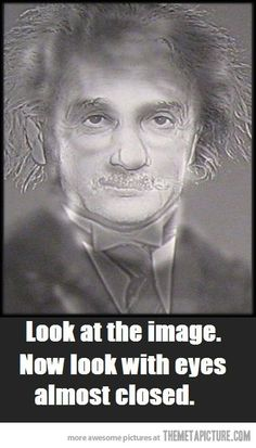 Albert Einstein or Harry Potter? helps if you cross your eyes at the same time too