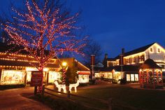 Christmas at Peddler's Village - Holiday shopping, dining, fabulous display of lights and more. For info: http://www.peddlersvillage.com/ and http://www.visitphilly.com/shopping/philadelphia/christmas-in-peddlers-village/