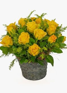 Gauteng Flower & Gift Delivery for all occasions. Whether you are looking for luxury or budget, our flower shops have what you are looking for. Sympathy Flowers, South Africa, Flower Arrangements, Sunshine, Plants, Gifts, Floral Arrangements, Presents, Nikko