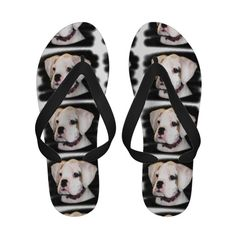 White Boxer dog flip flops sandals