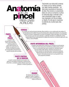 Home Beauty Salon, School Nails, New Baby Products, Nail Designs, Nail Art, Manicure Tips, Types Of Nails, Home Salon, Nail Desighns