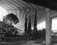 """"""" Vues de l'exposition Floralies, Cnit La Défense, 1959"""