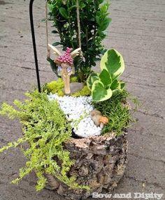 Fairy garden in a log