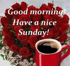 Good Morning! Have A Nice Sunday! good morning sunday sunday quotes good morning quotes happy sunday good morning sunday quotes happy sunday morning sunday morning facebook quotes sunday image quotes happy sunday good morning