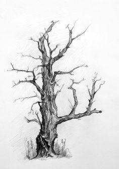 Tree Pencil Sketch, Tree Drawings Pencil, Tree Sketches, Ink Pen Drawings, Landscape Sketch, Landscape Drawings, Cool Landscapes, Amazing Drawings, Cool Drawings