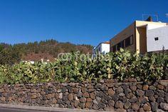 Foto: Vilaflor, Tenerife - Isole Canarie