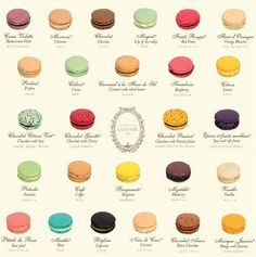 Laudree Macaron Collection