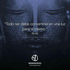 #buda