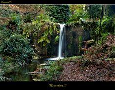 Monte Aloia Nature Park Spain | Google Images