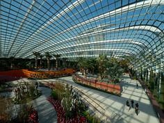 Wilkinson Eyre Architects · Cooled Conservatories at Gardens by the Bay · Divisare