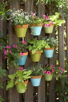 Miniature hanging gardens These could be hung on pallets. I plan on finishing the fence around my secret garden with a pallet fence and use vertical gardening!
