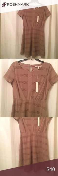 NWT LAUREN CONRAD Dress SZ 12 Brand new! Beautiful Sheer design on some parts of the dress. Not to worry because the dress has lining of the same color. Retails for $60. Comes new with tags! LC Lauren Conrad Dresses Mini