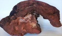 Castle Rock Mountain Exotic Red Lava Porous Plant Friendly #RXL32 #Unbranded
