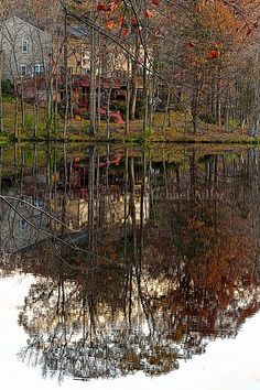 Houses reflected in water.
